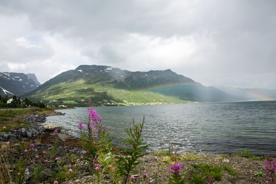 De mooiste foto's van mijn reis naar Noorwegen