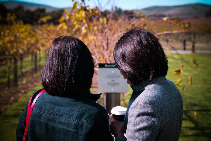 barossa-winetasting