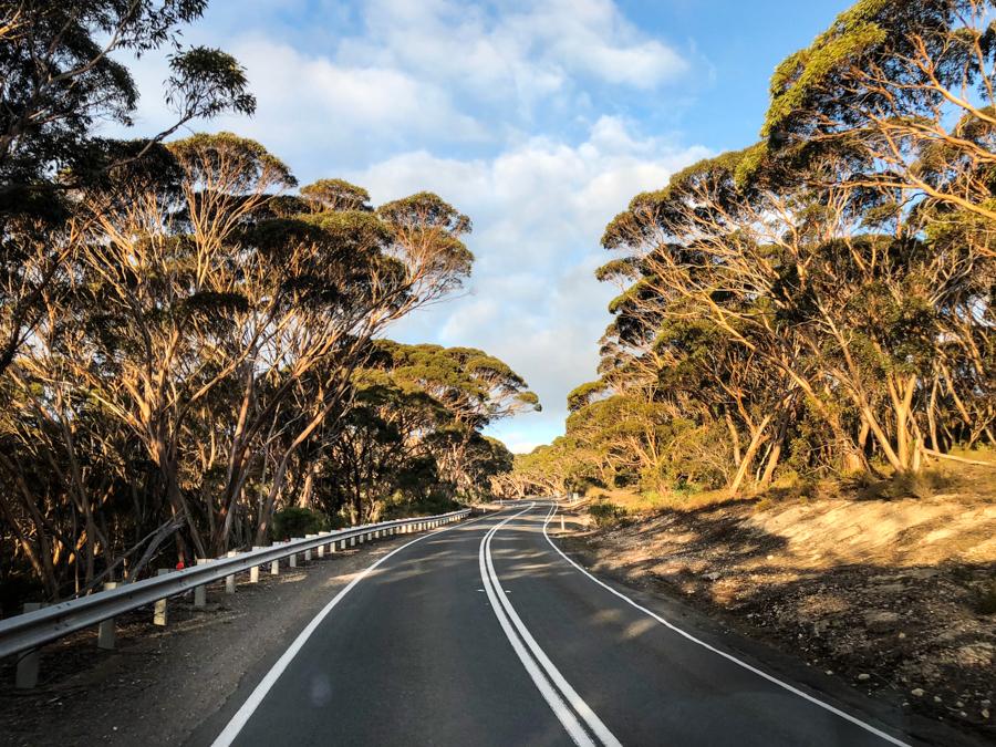 Filmen op Kangaroo Island